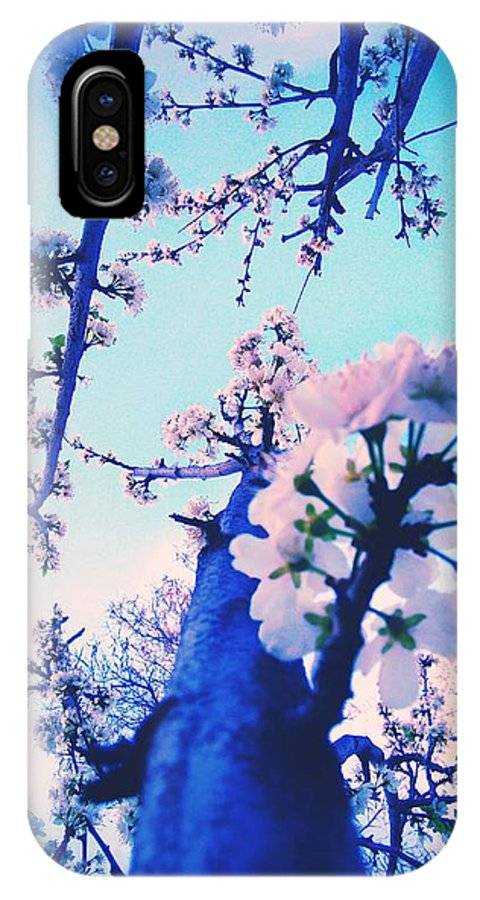 Nature IPhone X Case featuring the photograph Looking Up by Delila Wysong