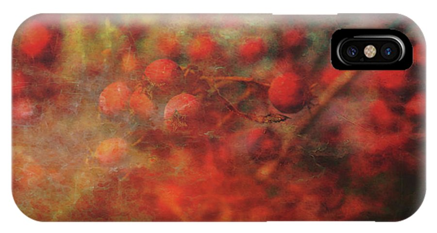 Lost IPhone X Case featuring the photograph Lost Vintage Crabapples 5942 Ldp_2 by Steven Ward