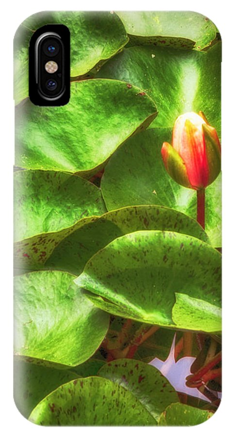 Flower IPhone X Case featuring the photograph Lotus Bud by Joseph Hollingsworth