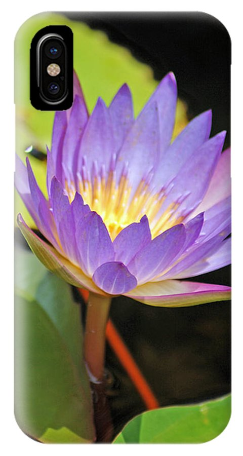 Lotus Flower IPhone X Case featuring the photograph Lotus Flower by Donna Bentley