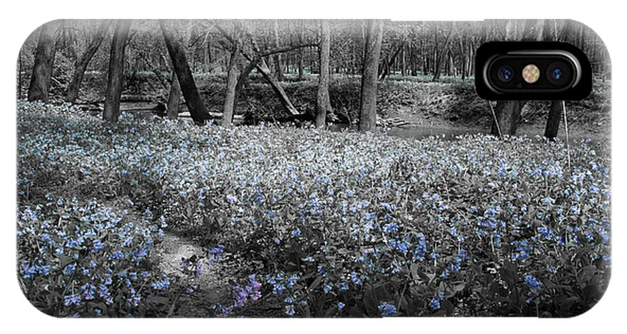 Virginia Bluebells IPhone X Case featuring the photograph Lowland Blues by Dylan Punke