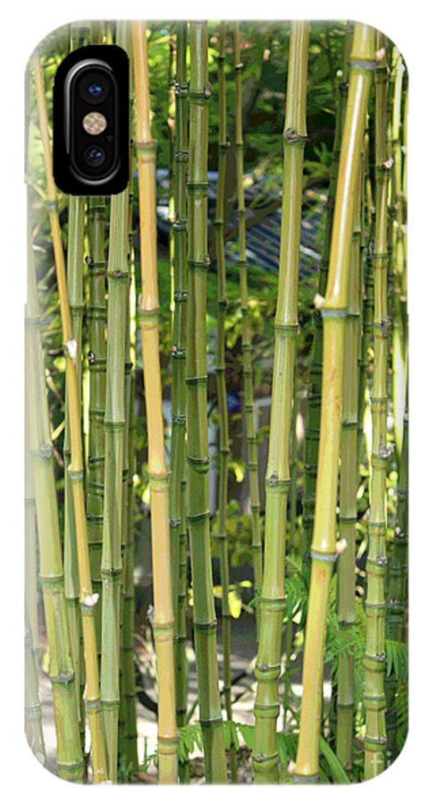 Bamboo IPhone X Case featuring the photograph Lucky Bamboo by Carol Groenen