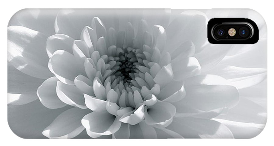 Nature IPhone X Case featuring the photograph Luminous by Shannon Turek
