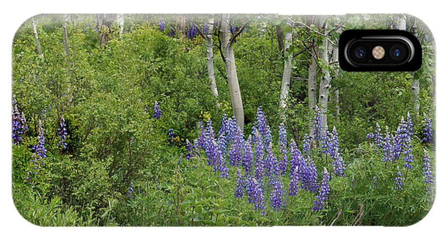 Aspen IPhone X Case featuring the photograph Lupine And Aspens by Heather Coen