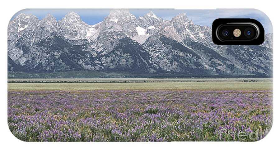 Grand Teton IPhone X Case featuring the photograph Lupine And Grand Tetons by Sandra Bronstein