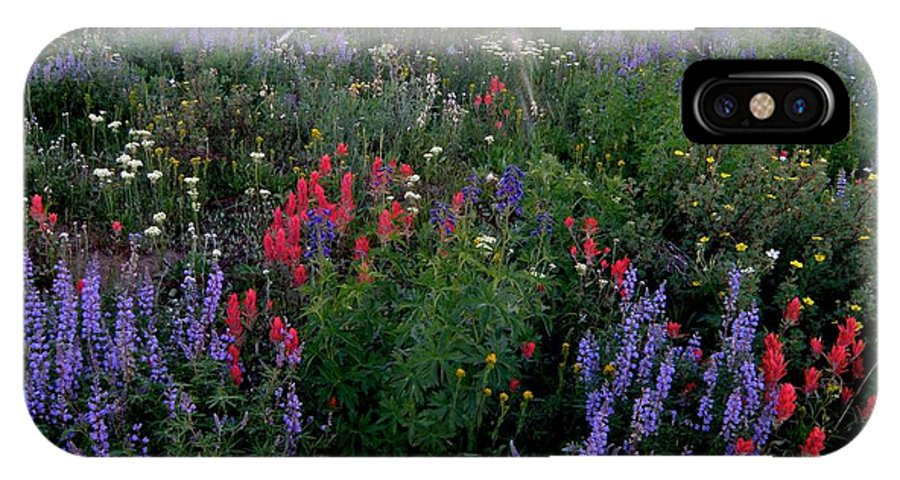 Lupines Flowers Indian Paintbrush Sun Colorado Meadow Wildflowers Nederland IPhone X Case featuring the photograph Lupines And Sun by George Tuffy