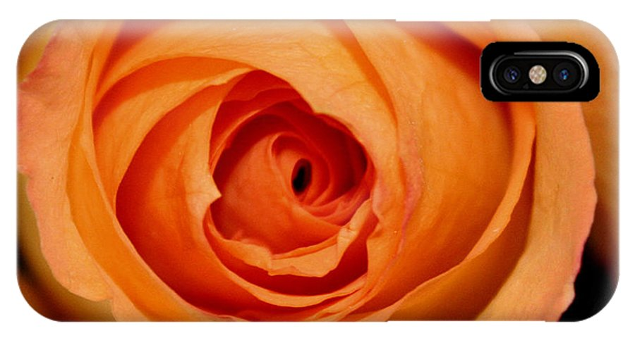 Rose IPhone X Case featuring the photograph Luscious Rose by Mary Gaines