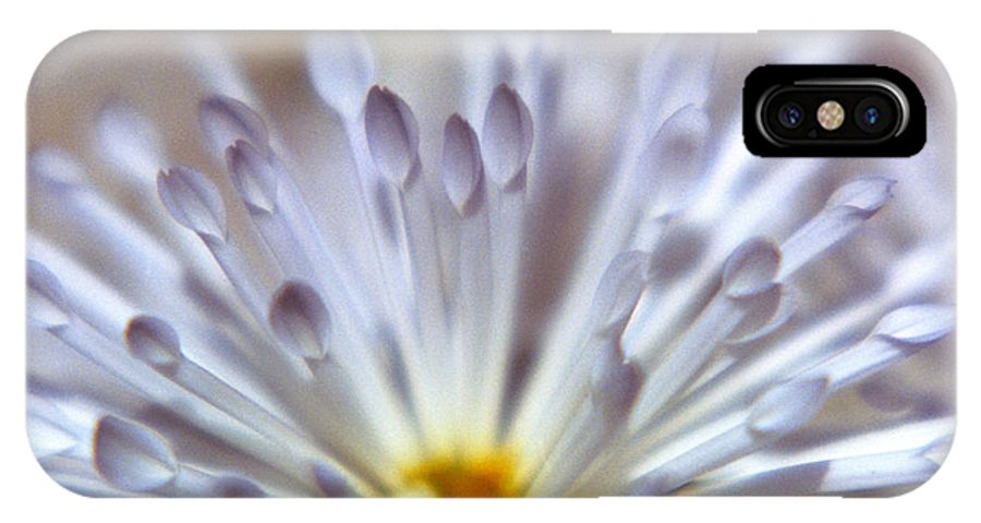 Macro IPhone X Case featuring the photograph Macro Flower 3 by Lee Santa