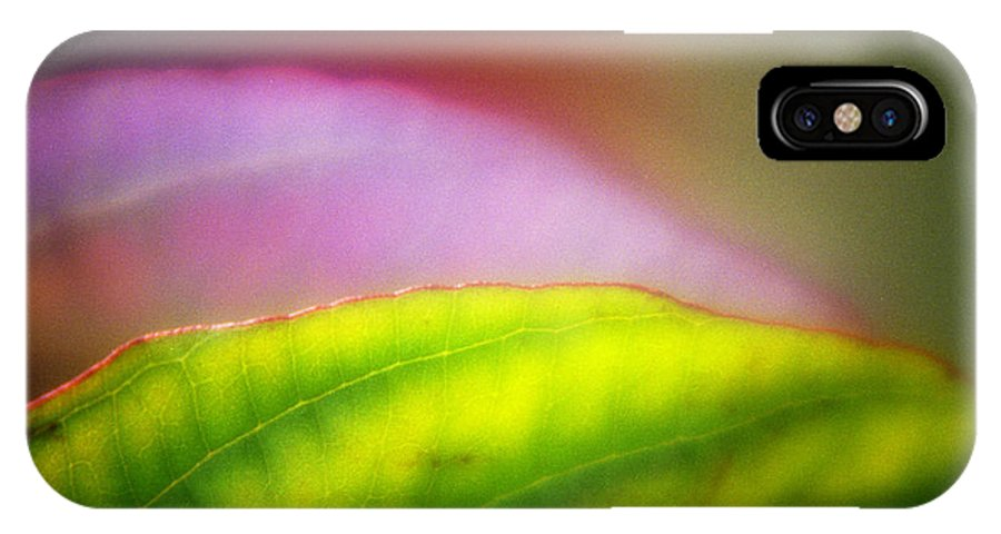 Macro IPhone X Case featuring the photograph Macro Leaf by Lee Santa