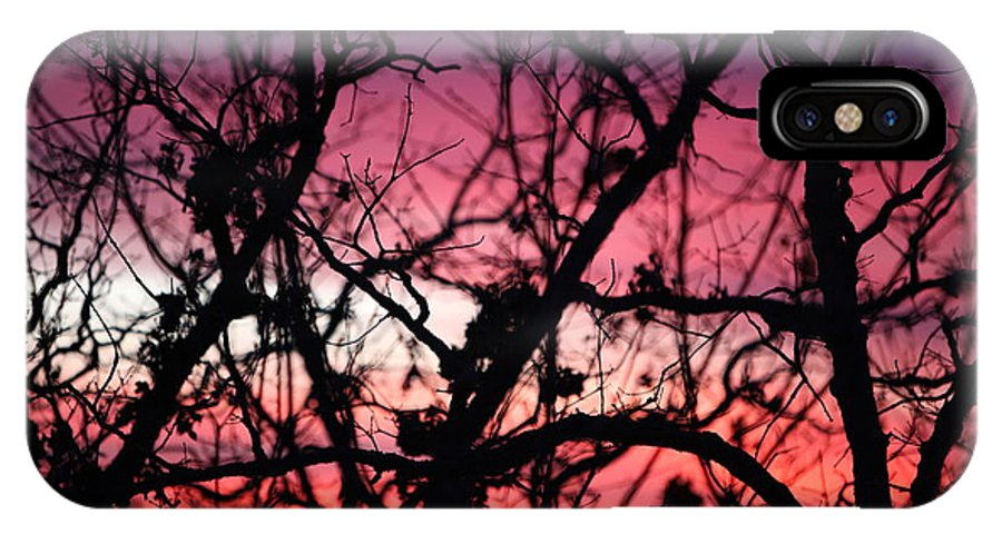 Sunset IPhone Case featuring the photograph Magnificent Sunset And Trees by Nadine Rippelmeyer