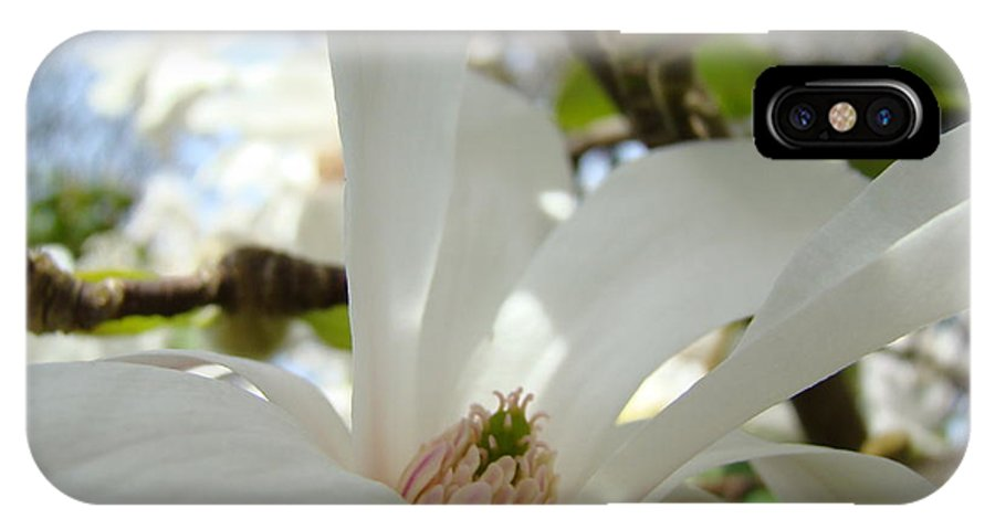 Magnolia IPhone X Case featuring the photograph Magnolia Flowers White Magnolia Tree Flower Art Spring Baslee Troutman by Baslee Troutman