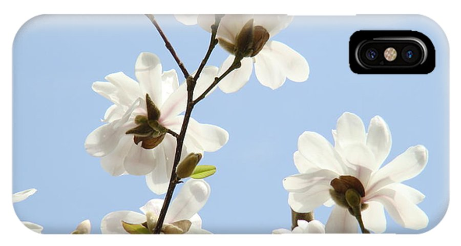 Magnolia IPhone X Case featuring the photograph Magnolia Flowers White Magnolia Tree Flowers Art Spring Baslee Troutman by Baslee Troutman
