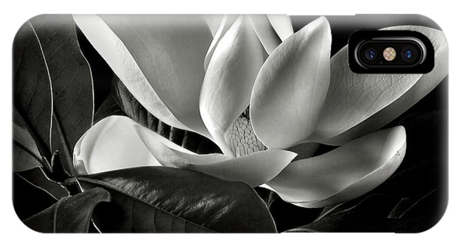 Flower IPhone X Case featuring the photograph Magnolia In Black And White by Endre Balogh