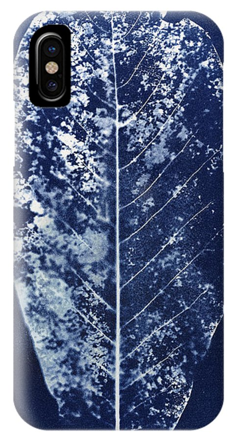 Leaf IPhone X Case featuring the photograph Magnolia Leaf Skeleton by Elspeth Ross