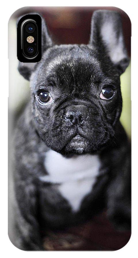 Dog IPhone X Case featuring the photograph Magoo II by Rafa Rivas