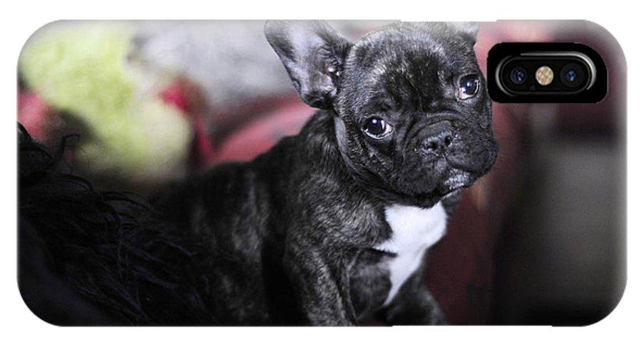 Dog IPhone X Case featuring the photograph Magoo by Rafa Rivas