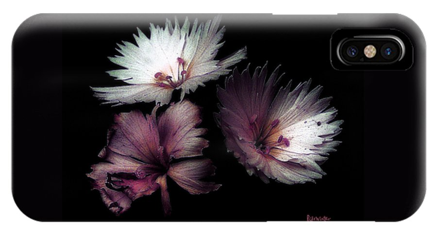 Dianthus IPhone X Case featuring the painting Maiden Mother Crone by RC DeWinter