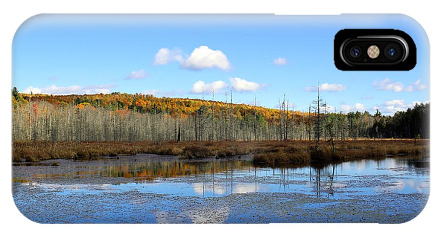 Maine Landscape IPhone X Case featuring the photograph Maine's Beauty by Cheryl Aguiar
