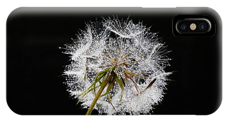 #fineart #art #photography #nature IPhone X Case featuring the photograph Make A Wish by Bernd Hau