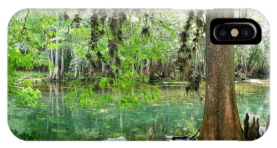 Manatee Springs Chiefland Florida IPhone X Case featuring the photograph Manatee Beauty by Sheri McLeroy