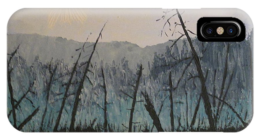 Northern Ontario IPhone X Case featuring the painting Manitoulin Beaver Meadow by Ian MacDonald
