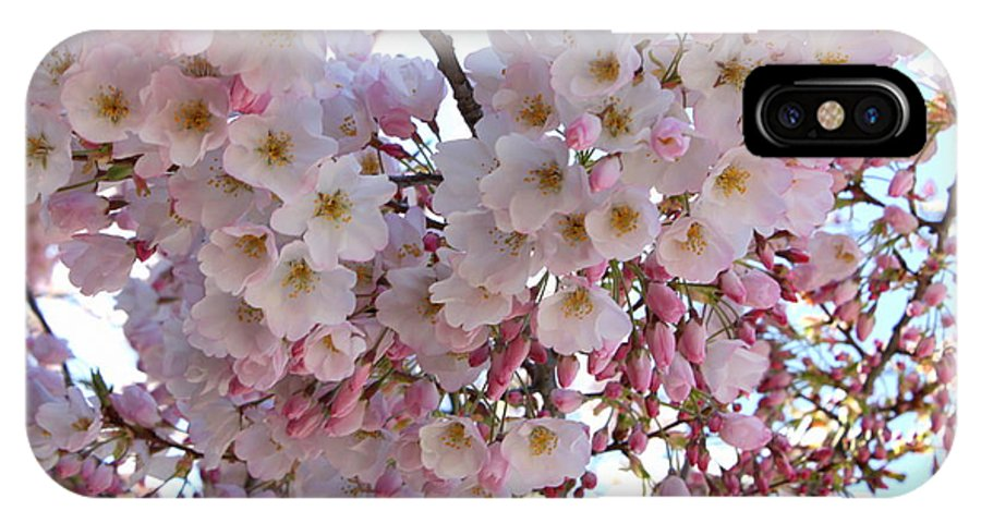 Pink Blossoms IPhone X Case featuring the photograph Many Pink Blossoms by Carol Groenen