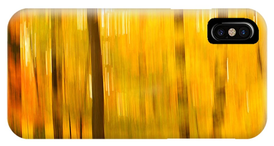 Abstract Photo IPhone X / XS Case featuring the photograph Maple Magic by Bill Morgenstern