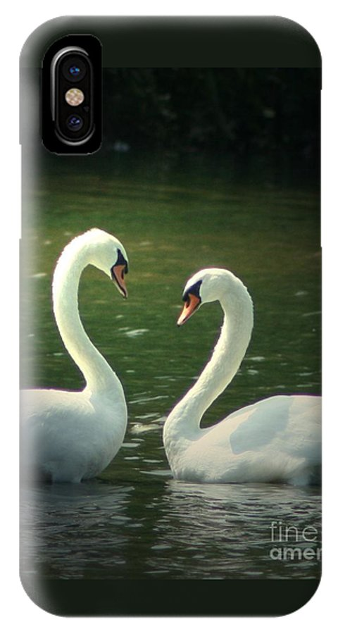 Nature Wildlife Ohio Waterscape Landscape Swans Lake Pond IPhone X Case featuring the photograph Mates For Life by Dawn Downour