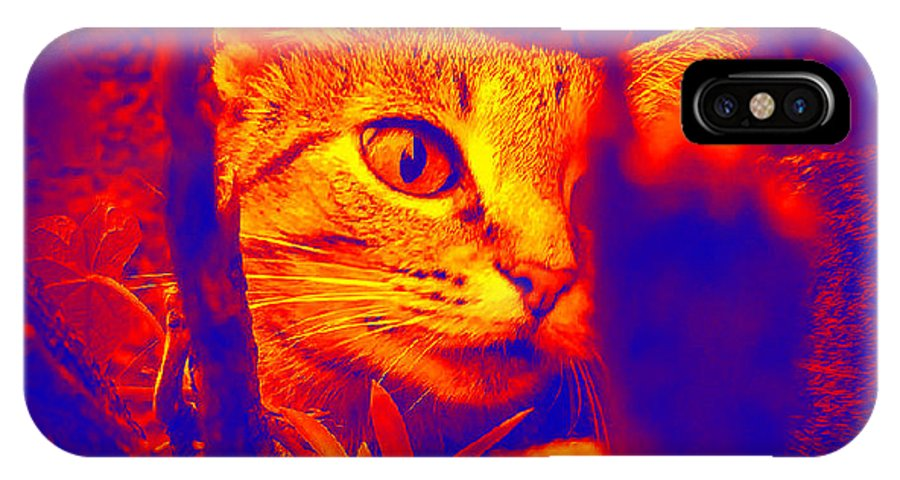Animal IPhone X Case featuring the photograph Maumau by Tindy McPhate