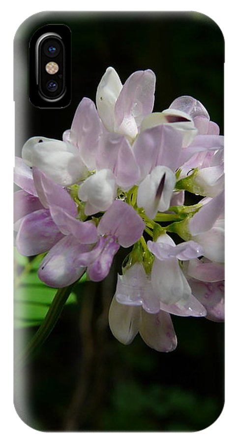 Flower IPhone X Case featuring the photograph Mauve Flower by Valerie Ornstein