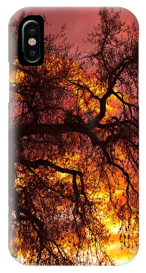 Sunset IPhone X Case featuring the photograph May One Sunset by James BO Insogna