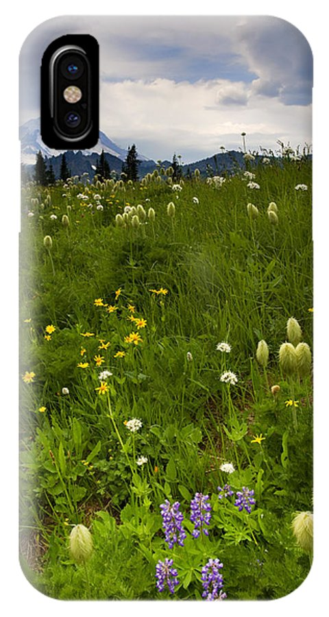 Rainier IPhone X Case featuring the photograph Meadow Beneath The Storm by Mike Dawson