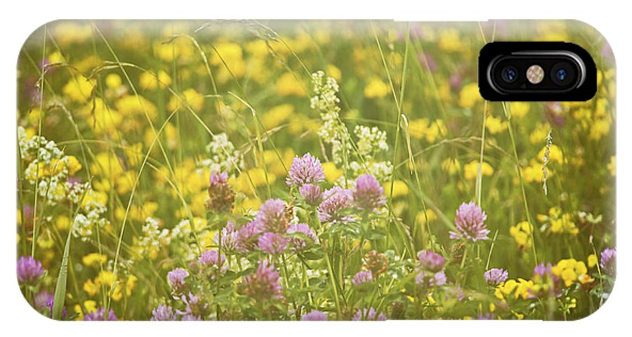 Nina Stavlund IPhone X Case featuring the photograph Meadow Dreams... by Nina Stavlund