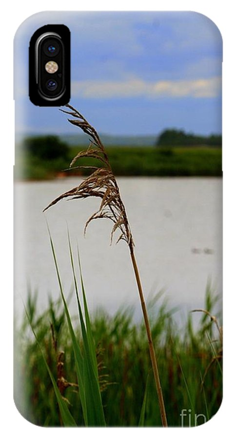 Meadow IPhone X / XS Case featuring the photograph Meadow Grass by John Kenealy