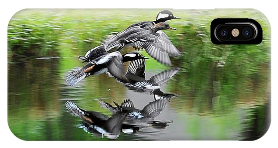 Hooded Merganser's In Flight IPhone X Case featuring the photograph Mergansers In Flight by William Bosley