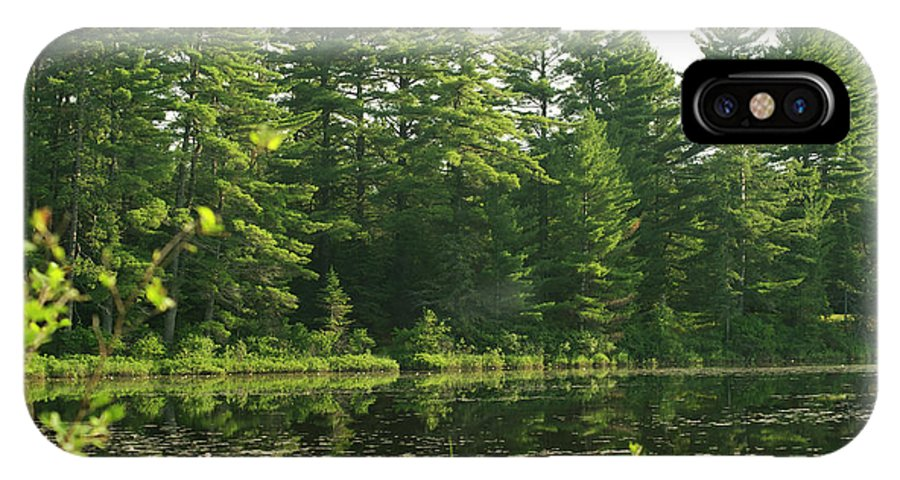 Mew Lake IPhone X Case featuring the photograph Mew Lake Algonquin Park by Elaine Mikkelstrup