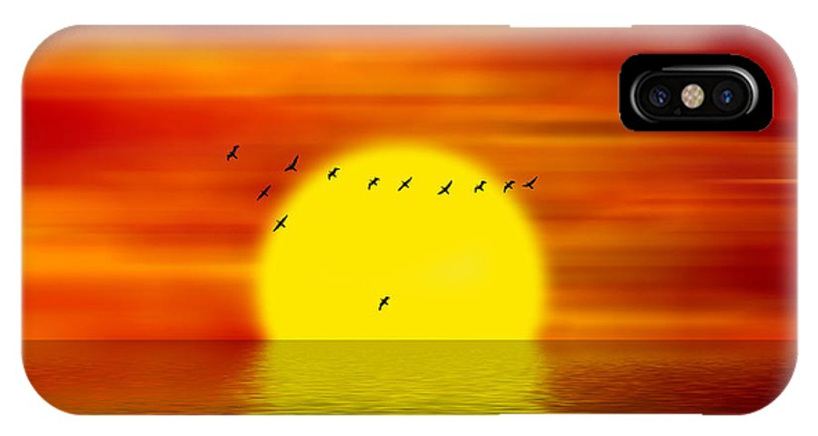 Sunset IPhone X Case featuring the digital art Migrating Birds by Michal Boubin
