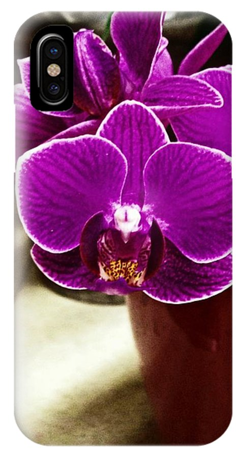 Mini Orchids IPhone X Case featuring the photograph Mini Orchids by Catherine Melvin