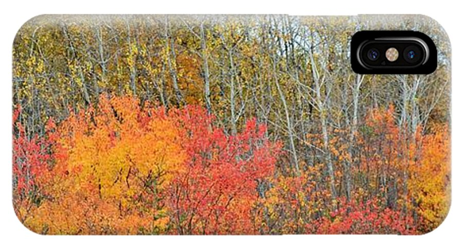 Autumn IPhone X Case featuring the photograph Minnesota Autumn 55 by Kimberly Benedict