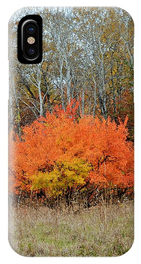 Autumn IPhone X Case featuring the photograph Minnesota Autumn 57 by Kimberly Benedict