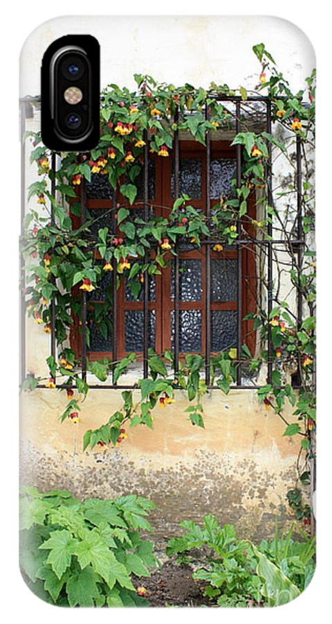Mission Window IPhone X Case featuring the photograph Mission Window With Yellow Flowers Vertical by Carol Groenen