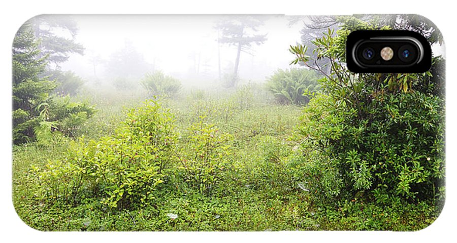 Fog IPhone X Case featuring the photograph Misty Morning In The Glades by Thomas R Fletcher