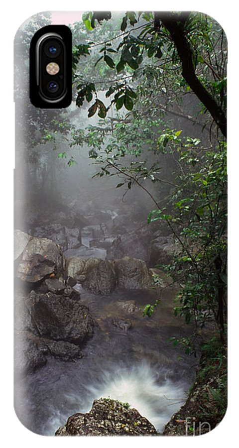 Puerto Rico IPhone X / XS Case featuring the photograph Misty Rainforest El Yunque Mirror Image by Thomas R Fletcher