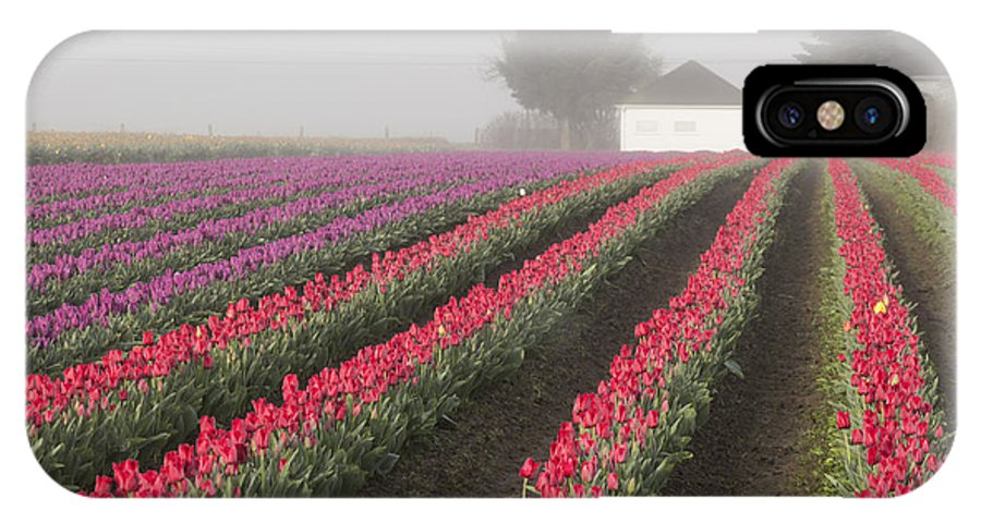 IPhone X Case featuring the photograph Misty Tulip Fields Iv by Eric Ewing