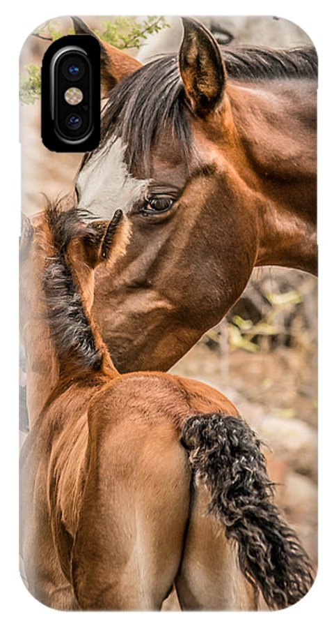 Animals IPhone X / XS Case featuring the photograph Mom And Baby by Sandy Klewicki