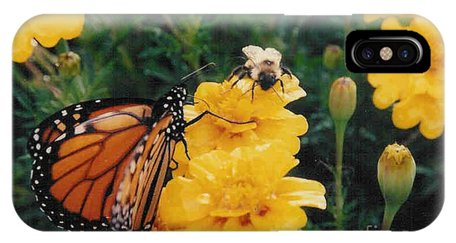 Robin Lee Mccarthy Photography IPhone X Case featuring the photograph #002 Monarch Bumble Bee Sharing by Robin Lee Mccarthy Photography