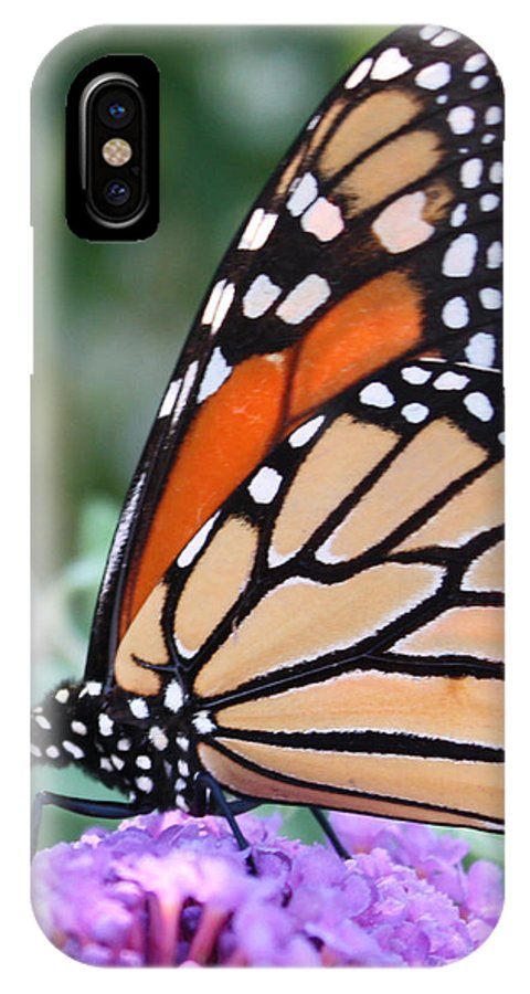 Monarch IPhone X Case featuring the photograph Monarch Butterfly by Janet Pugh