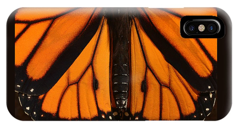 Insect IPhone X / XS Case featuring the photograph Monarch Butterfly Wings by Thomas Morris