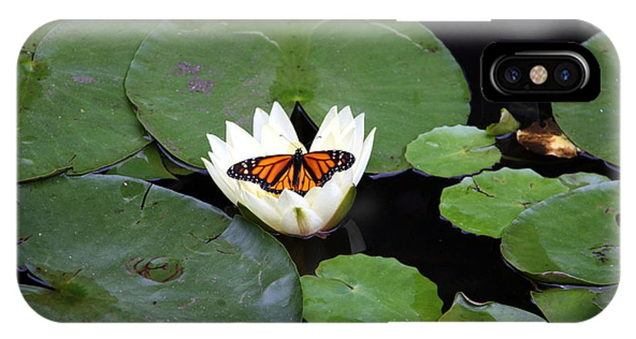 Water IPhone X Case featuring the photograph Monarch On Waterlily by George Jones