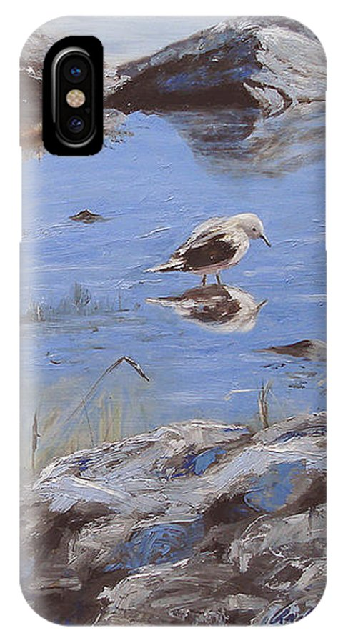 Animal IPhone X Case featuring the painting Mono Lake by Barbara Andolsek